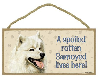 "Breed Samoyed- A spoiled ""your favoriate dog lives here! - Door Sign 5'' x 10''"