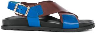 Sofie D'hoore Marsala sandals
