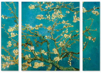 """Trademark Global Vincent van Gogh 'Almond Branches In Bloom' Multi Panel Art Set Large - 41"""" x 30"""" x 2"""""""