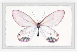 August Grove 'Pale Pink Butterfly' Framed Watercolor Painting Print