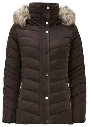 Wallis Petite Brown Short Padded Coat