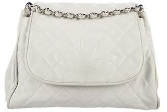 Chanel Caviar Timeless Accordion Flap Bag