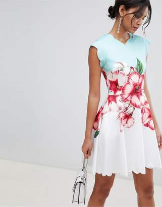 Ted Baker scalloped skater dress in nectar print