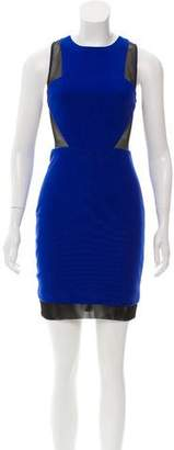 Elizabeth and James Sleeveless Mini Dress