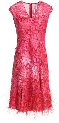 Feather-Embellished Embroidered Tulle Dress