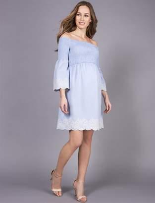 A Pea in the Pod Seraphine A-line Maternity Dress