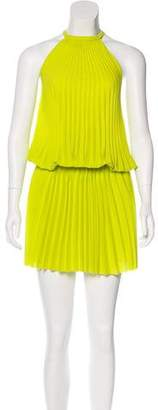 Alexis Pleated Knee-Length Dress