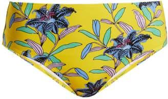 Diane von Furstenberg Cheeky mid-rise floral-print bikini briefs