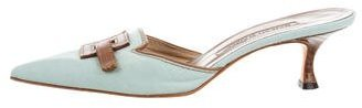 Manolo Blahnik Canvas Pointed-Toe Mules $95 thestylecure.com