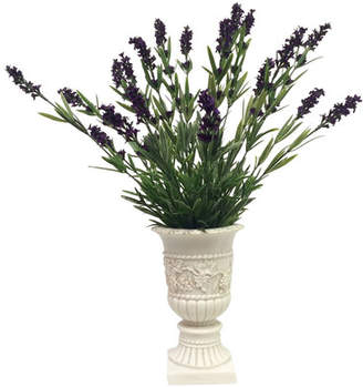 One Allium Way French Lavender in French Country Urn