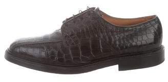 Allen Edmonds Hillcrest Alligator Derby Shoes