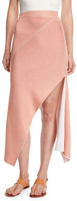 Rosetta Getty Reversible Pinwheel Midi Skirt
