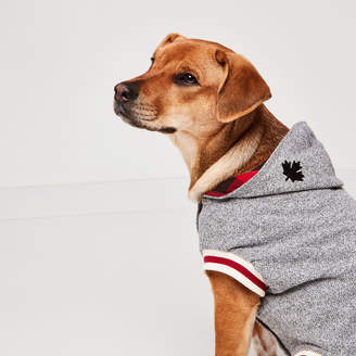 Roots Canada Pooch Hoody Size 18