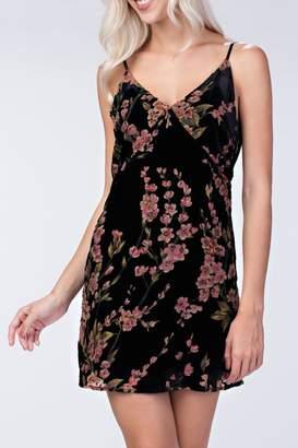 Honeybelle Velvet Floral Dress