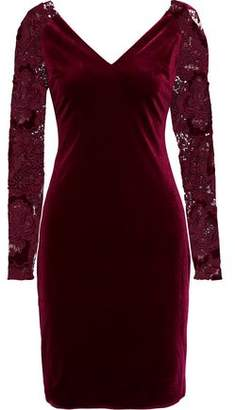 Badgley Mischka Guipure Lace-paneled Velvet Dress