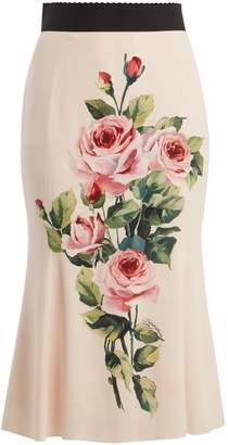 Dolce & Gabbana Rose-print stretch-silk midi skirt