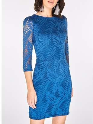 Dorothy Perkins Teal Blue Leafy Lace Bodycon Dress