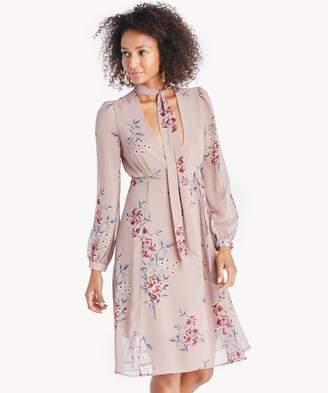 Sole Society Tyra Dress