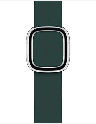 Apple 40mm Forest Green Modern Buckle - Medium