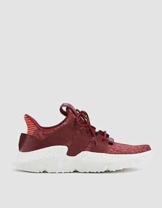 adidas Prophere Sneaker in Maroon