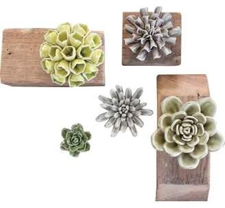 Gracie Oaks 5 Piece Ceramic Succulent Plant in Pot