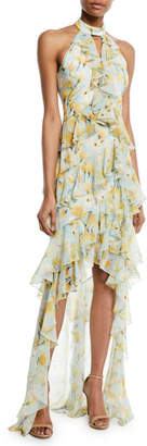 Badgley Mischka Floral High-Low Ruffle Halter Gown