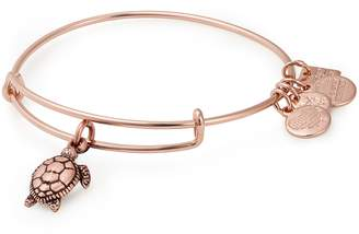 Alex and Ani (アレックス アンド アニ) - Alex and Ani Charity by Design Sea Turtles Adjustable Wire Bangle