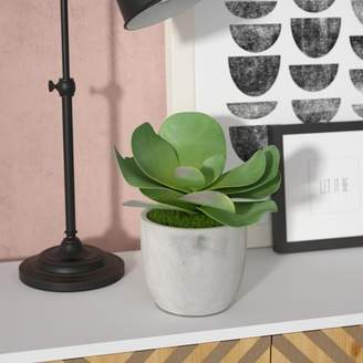 Brayden Studio Concrete Succulent Plant in Pot
