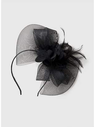 Dorothy Perkins Womens Black Flower Fascinator