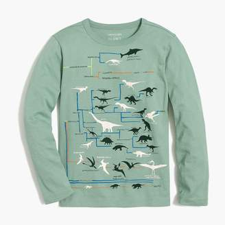 J.Crew Boys' long-sleeve dinosaur chart glow-in-the-dark graphic T-shirt