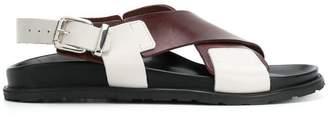 Sofie D'hoore colour-block crossover sandals