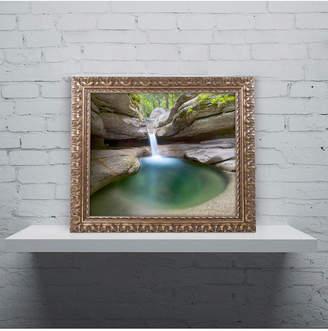 Pool' Trademark Global Michael Blanchette Photography 'Sabbaday Green Ornate Framed Art