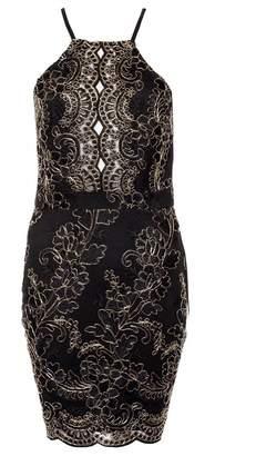 Quiz Black and Gold Lace Scallop Bodycon Dress