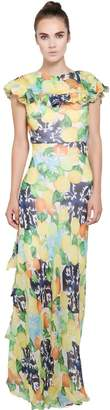 Isolda Printed Silk Chiffon Dress