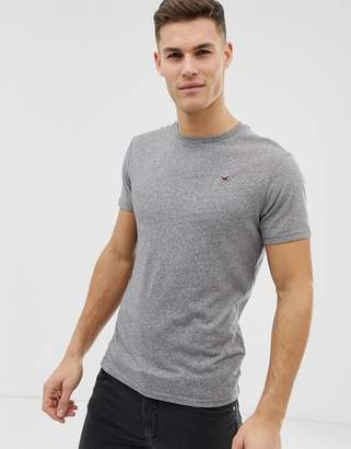 Hollister Core Crew Neck T-Shirt Seagull Logo in Gray Marl