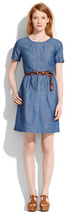 Chambray songbird dress
