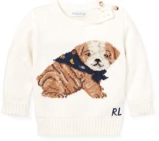 aaef8f3c9439 Kids Dog Sweater - ShopStyle