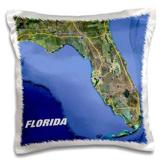 3dRose Print of Snow Bird Routes To Florida On State Map - Pillow Case, 16 by 16-inch