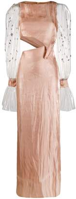 Genny transparent sleeve maxi dress