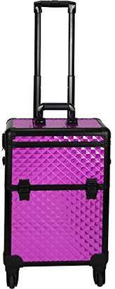 Sunrise C6301 4-Wheels Professional Rolling Aluminum Cosmetic Makeup Case