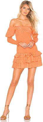 Tularosa Poppy Dress