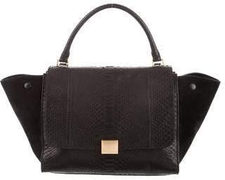 Celine Small Python Trapeze Bag