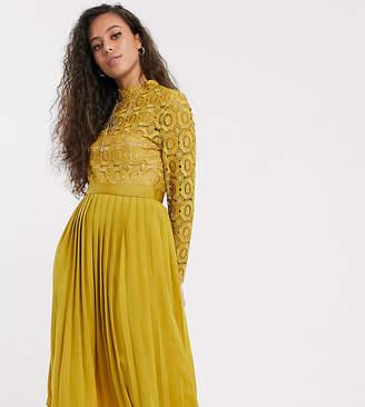 Little Mistress Petite midi length long sleeve lace dress in mustard