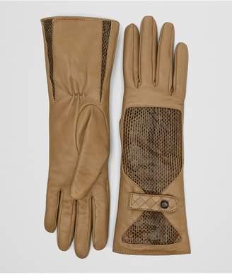 Bottega Veneta Camel Lamb Ayers Glove