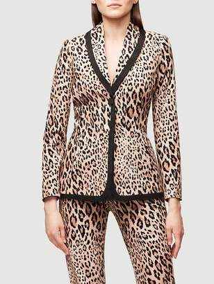 Frame Fitted Cheetah Velvet Jacket