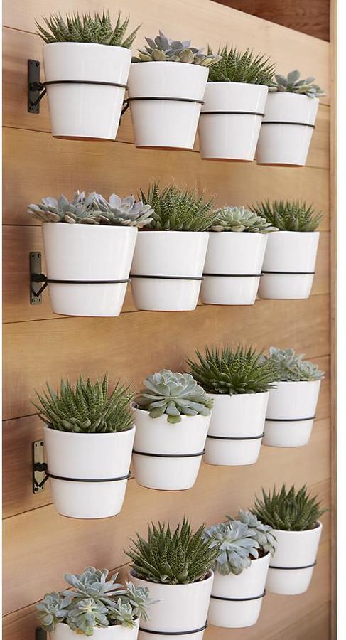 Crate & Barrel Set of 3 Wall Planter Hooks