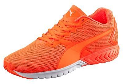 PUMA IGNITE Dual NightCat Men's Running Shoes