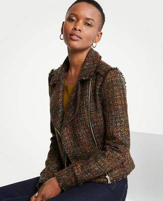 Ann Taylor Fringe Tweed Moto Jacket