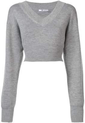 Alexander Wang cropped knit sweater