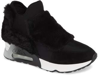 Ash Lazer Sneaker